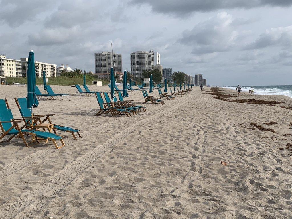 Palm Beach - cover