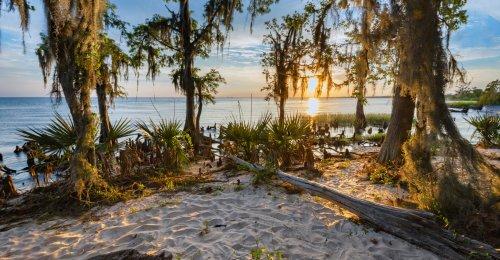 10 Best Hikes In Beautiful Louisiana