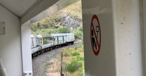 The Stunning Train Trip You Must Experience In New Zealand
