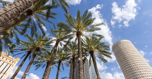 Fantastic Experiences In Tampa, Florida For Mature Travelers
