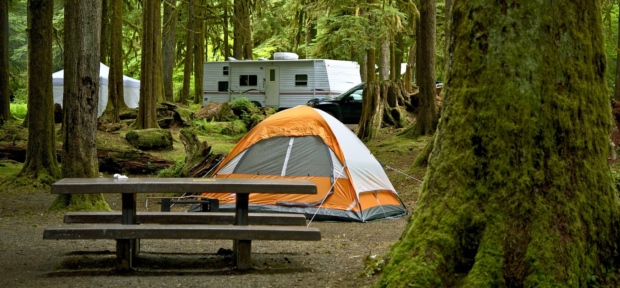 9 Tips For Finding Free Camping Spots In The U.S.