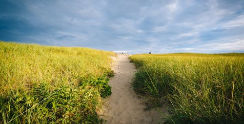 Cape Cod National Seashore: The 7 Best Experiences - TravelAwaits
