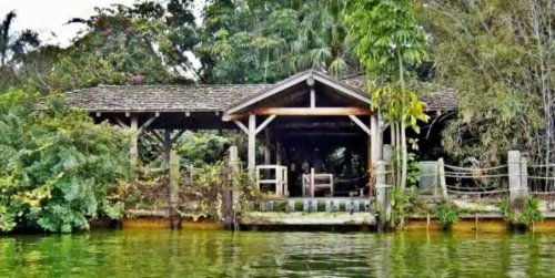 Disney World's Abandoned Island: The Mystery Behind Discovery Island