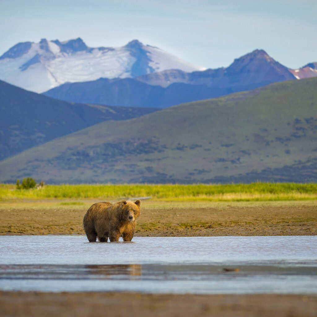 Avoid The Crowds By Visiting These 5 Underrated National Parks
