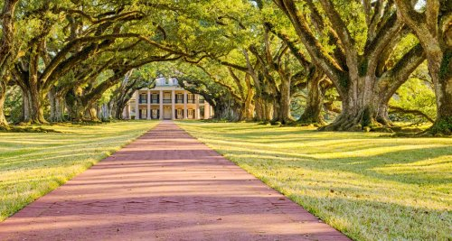 The Best Day Trips From New Orleans