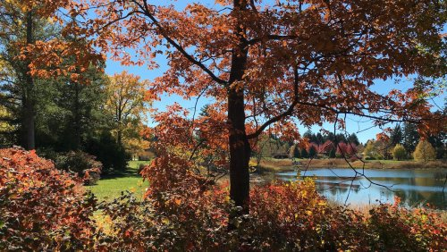 15 Reasons To Love Fall In Wisconsin