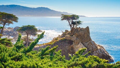 Best Things To Do In And Near Monterey