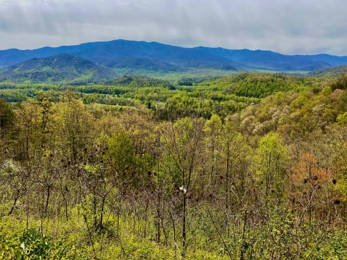 4 Beautiful Drives In East Tennessee - TravelAwaits