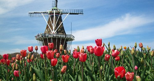 How To Spend A Beautiful Weekend In Charming Holland, Michigan