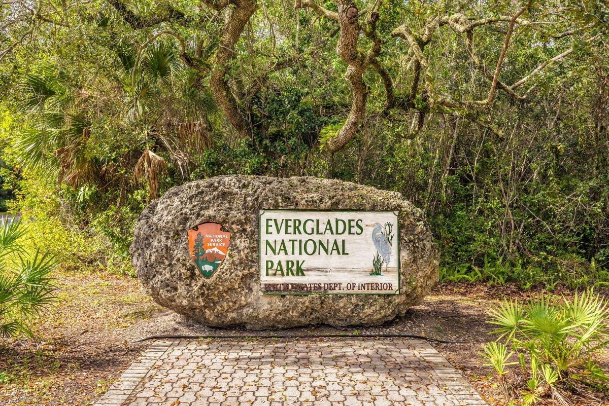 10 Essential Ranger Tips For Visiting Everglades National Park