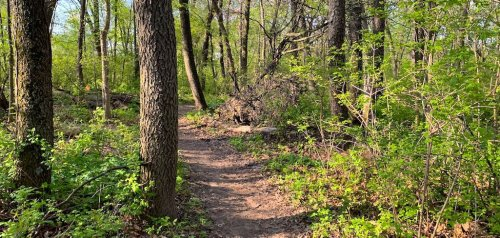 9 Best Hikes To Experience In Wisconsin