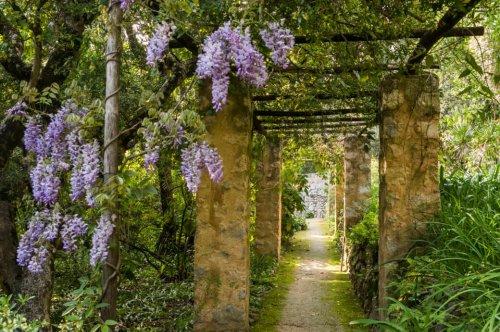 Die spektakulären Gärten an der Côte d'Azur