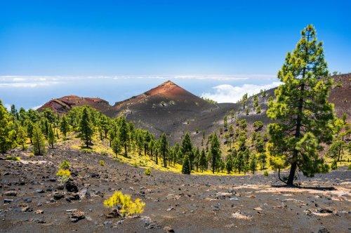 Warnstufe Gelb! Auf den Kanaren droht ein Vulkanausbruch