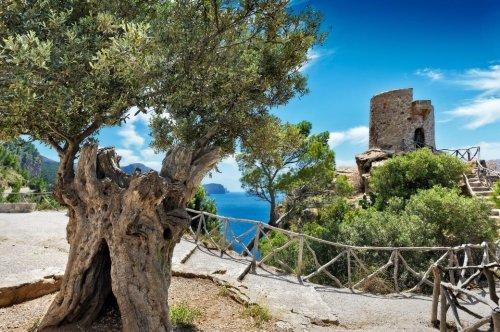 GR 221 – der schönste Weitwanderweg auf Mallorca