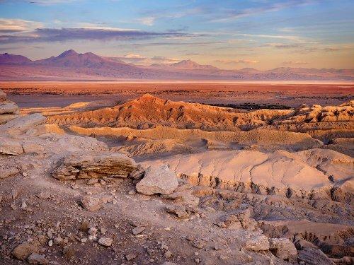 Spektakulärer Dinosaurier-Fund in der Atacama-Wüste - TRAVELBOOK