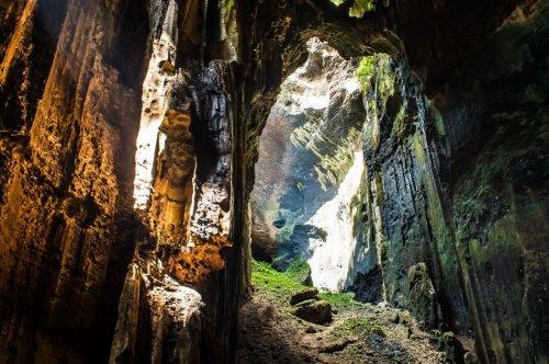 Die Höhlen von Gomantong: Asiens ekligste Touristenattraktion?