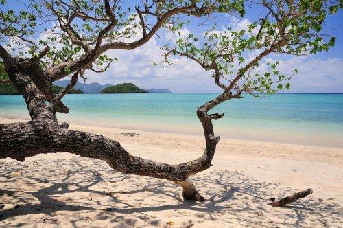Mayotte – das Tropen-Paradies der EU - TRAVELBOOK