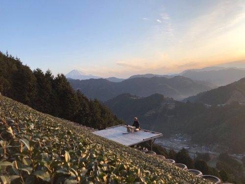 5 vegan-friendly experiences in Shizuoka, Japan