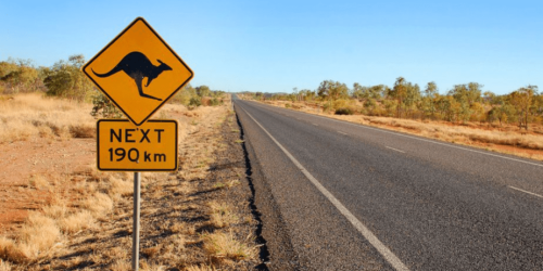 Best Places to See Wildlife in Australia