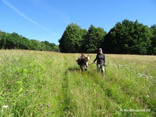 Eselwandern in Frankreich - Erfahrungsbericht   Travelinspired