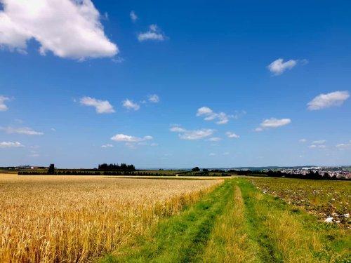 """Wandern am Rande der Schwäbischen Alb: """"hochgehblickt"""" - 9 km Rundwanderung ab Nürtingen (Qualitätswanderweg der hochgehberge)"""