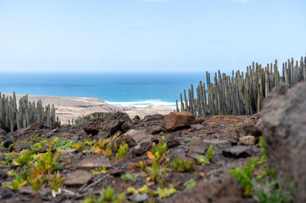 Die Kanarischen Inseln entdecken - cover