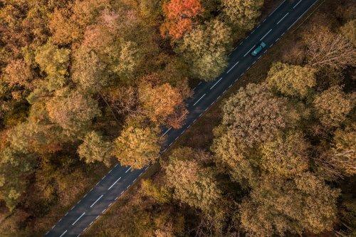 Freiheit pur: Die 11 besten Roadtrips in Deutschland