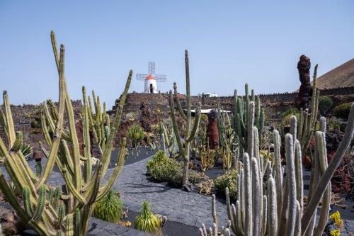 César Manrique in Lanzarote: Das sind seine 15 schönsten Werke
