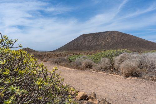 Isla de Lobos: Reisetipps & Highlights für euren Tagesausflug