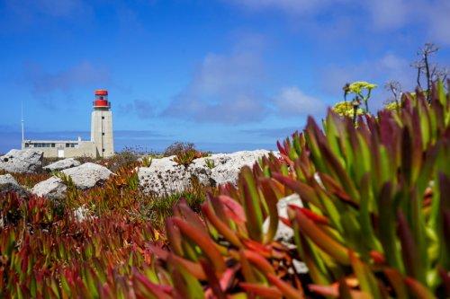 Die 11 schönsten Algarve Sehenswürdigkeiten & Highlights