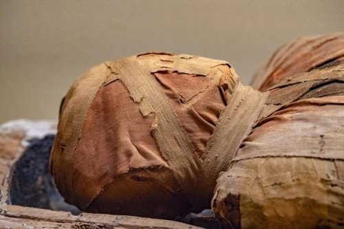 40 Mummies Discovered in Egypt Date to Over 2,300 Years Ago