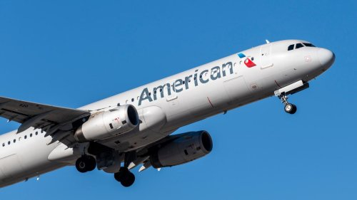 American Airlines Flight Attendants 'Insulted' by Corporate Suggestion