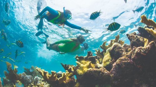 Video Contest Offers Chance To Win Florida Keys Vacation