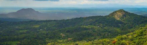 Top Reasons to visit Wayanad