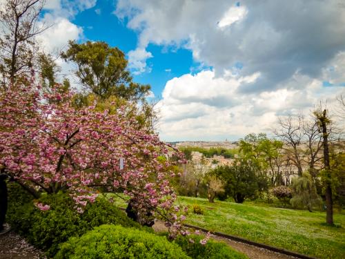 Parchi Roma: i 10 più belli tra natura, storia e un bel ciaone allo stress