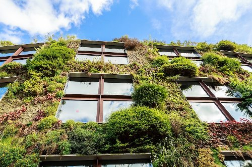 Use Your Home's Architecture to Help Grow Food