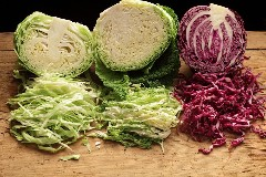 Discover cabbage recipes