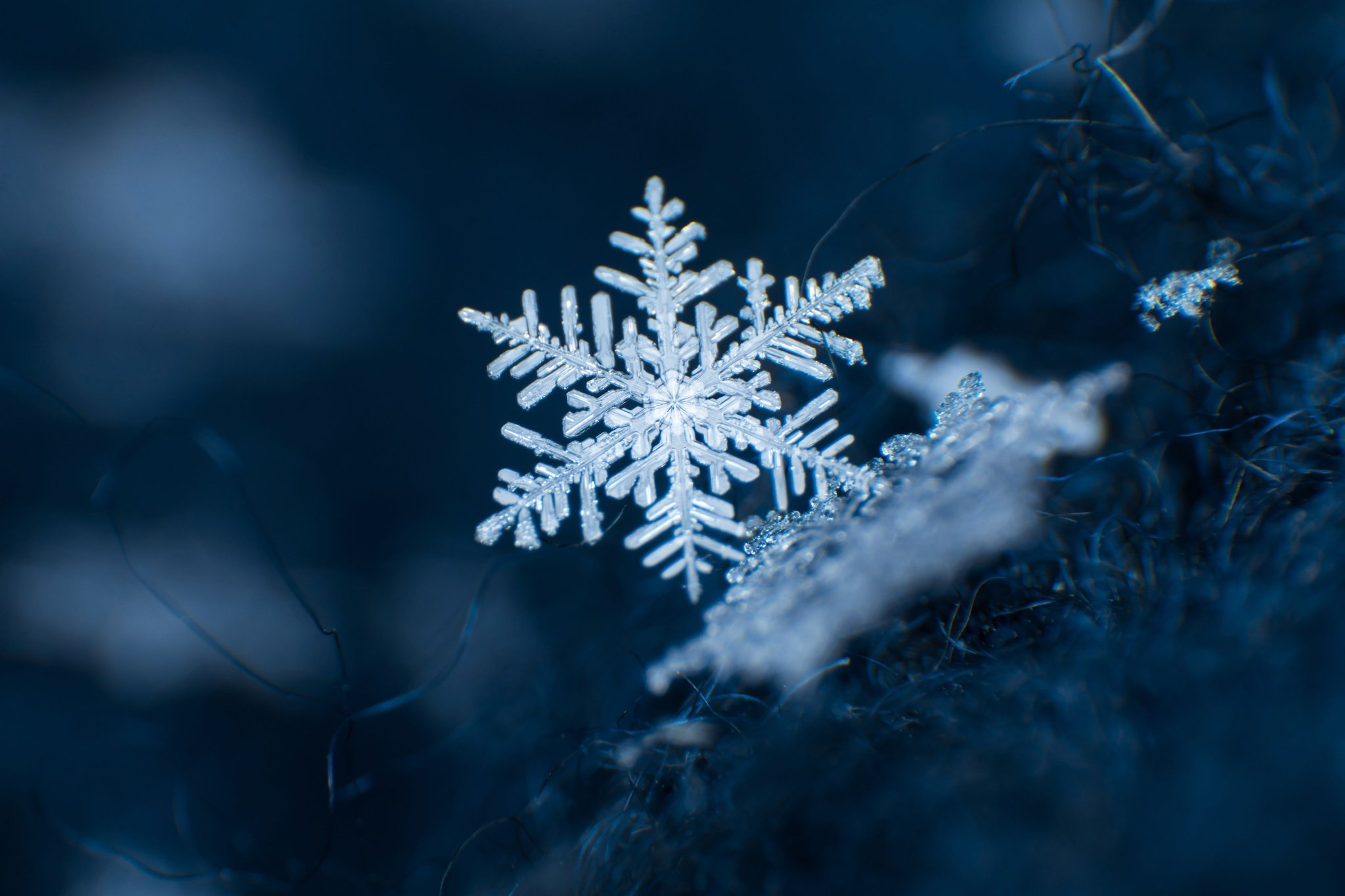 13 perfect snowflakes captured in photos
