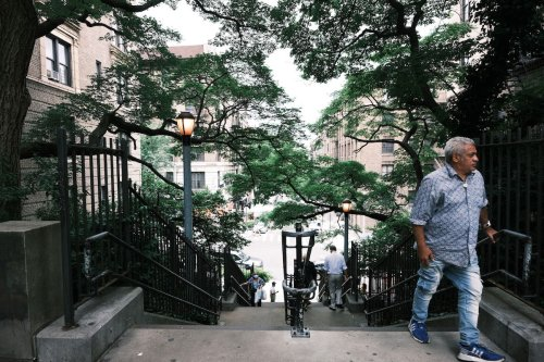 Communities of Color Have Fewer Trees—This 'Tree Equity' Score Wants to Change That
