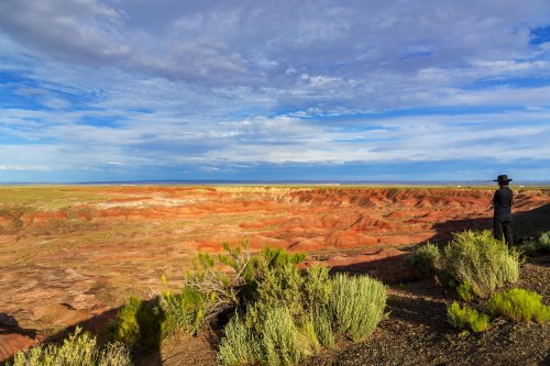 12 Unexpected Facts About Arizona's Petrified Forest National Park