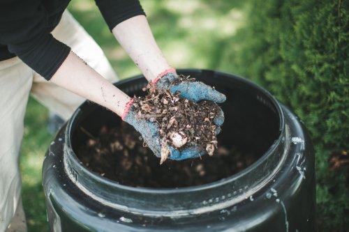 14 Benefits of Composting