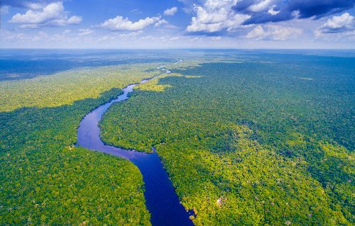 12 Fascinating Facts About the Amazon River