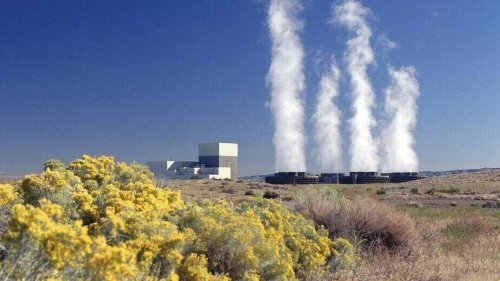 No CEO found for nuclear power plant near Tri-Cities. Temporary leader named