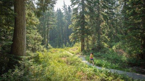 Ask a Gear Guru: What's The Best Trail Running Gear This Spring? – Triathlete