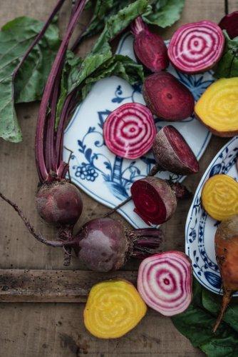 Die 5 leckersten Salat-Rezepte zum Grillen – die perfekten Beilagensalate für dein Grillfest!