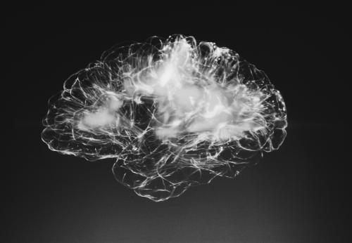 Inside the First-Ever Scientific Study of Post-Mortem Meditation