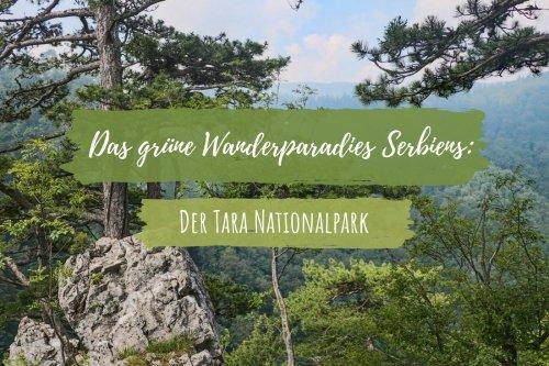 Das grüne Wanderparadies Serbiens: Der Tara Nationalpark