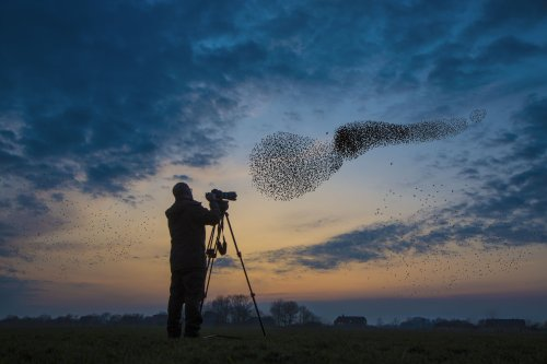 The Best Destinations in the World for Birdwatching