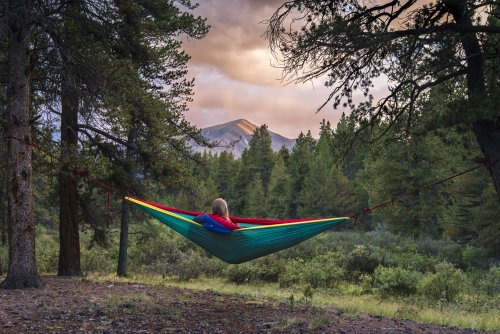 An Argument for Girls Who Sleep Alone in the Woods