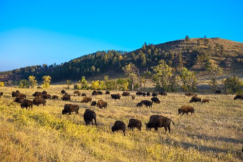 America's Best State Parks